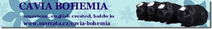 caviabohemia