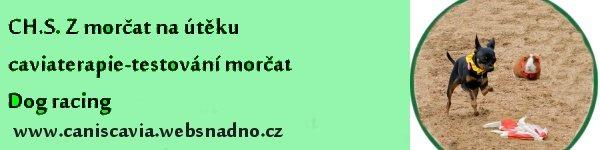 images/comprofiler/cb_banner_2155_5372528a10f23.jpg