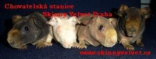 images/comprofiler/cb_banner_2342_5361044493496.jpg