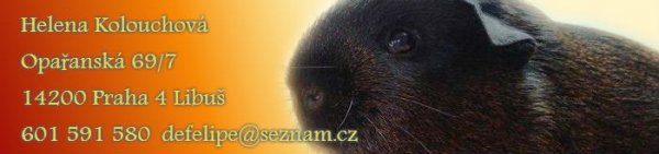 images/comprofiler/cb_banner_3745_56e857adb1ce3.jpg