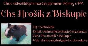 images/comprofiler/cb_banner_3970_5c4f7542104db.jpg